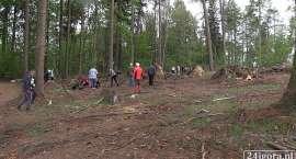 Uczniowie posadzili około 800 drzew