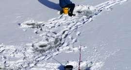 Utonął wędkarz. Apelujemy o zaprzestanie wędkowania z lodu