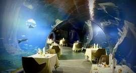 Przedłużamy Walentynki ? kolacja w Tunelu Wodnym!