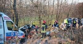 Śmiertelny wypadek na drodze Radomierz - Komarno