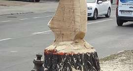 Nietypowy pomysł na ścinanie drzewa