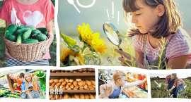Jak zmienić nawyki żywieniowe dzieci z Jeleniej Góry