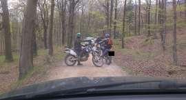 Szaleli motocyklami po lasach. Zostali ukarani mandatami.