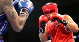 Pięściarze Red Fighters ruszają na Mistrzostwa Dolnego Śląska i Opolszczyzny