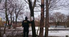 Strażnicy miejscy walczą z nielegalnym plakatowaniem