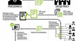 7 tysięcy miejsc pracy dla młodych w powiatach Dolnego Śląska