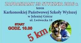 BIEG NA SZEŚĆ ŁAP JELENIA GÓRA 23.01.2016