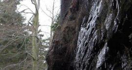 Jutro zostanie zamknięty wodospad Kamieńczyka