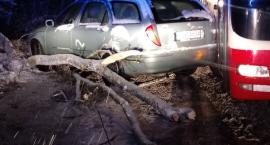 Samochód uderzył w drzewo leżące na drodze. Włącz Zello