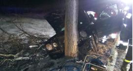 Mercedes uderzył w drzewo. Kierująca i trójka dzieci w szpitalu.