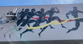 Mural zdobi wejście do Parku Sportowego Złotnicza