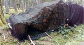 Drewno pod siatką - nietypowy widok przy leśnych szlakach