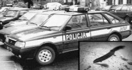 Areszt za zbrodnie sprzed 20 lat