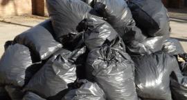 Przyłącz się do Sprzątania Świata! Nie śmiecimy - sprzątamy - zmieniamy!