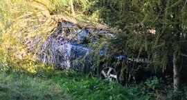 W Mysłakowicach auto uderzyło w drzewo