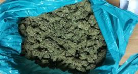 Kolejny handlarz narkotyków w rękach policji