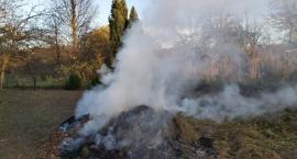 Za palenie odpadów roślinnych grozi mandat