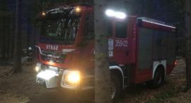 Szklarska Poręba : Ognisko w lesie przyczyną pożaru ściółki