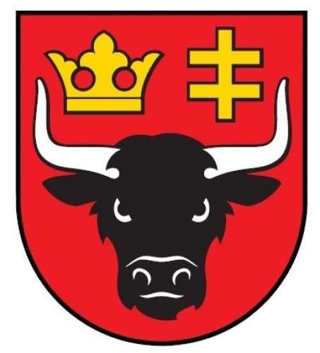 Wybory samorządowe, Powiatu - zdjęcie, fotografia