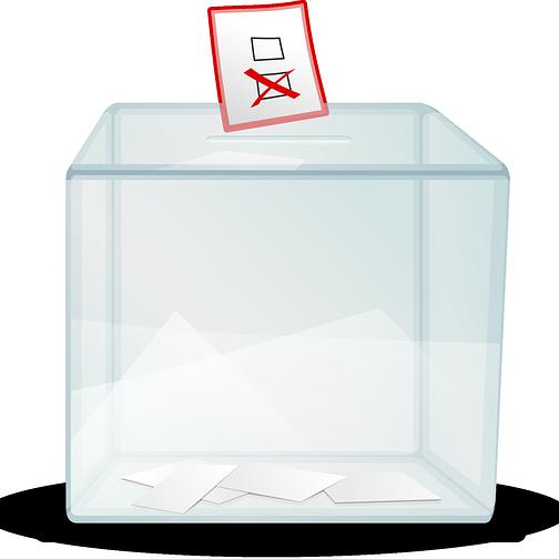 Wybory samorządowe, Ulice liściaste głosują - zdjęcie, fotografia