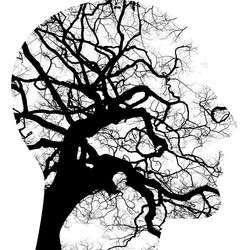 Zdrowie i uroda, Badania psychologiczne Sejnach - zdjęcie, fotografia