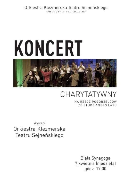 Biznes i Praca, Koncert charytatywny - zdjęcie, fotografia