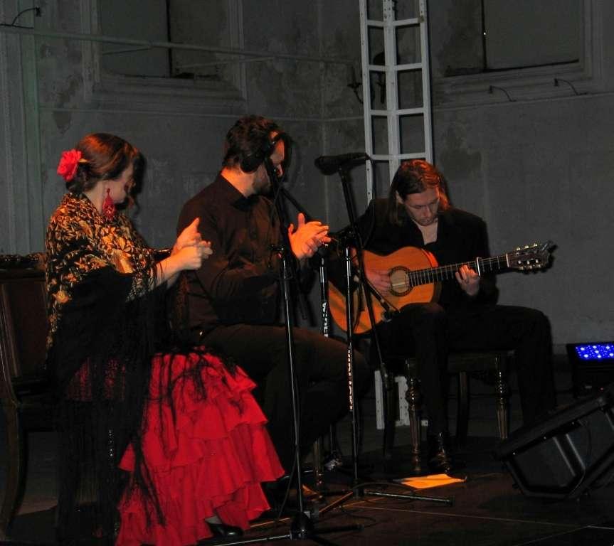 Biznes i Praca, Koncert flamenco (Zdjęcia) - zdjęcie, fotografia
