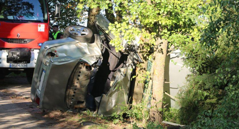 Wypadki drogowe, zagięło drzewie - zdjęcie, fotografia