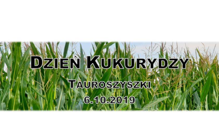 Rolnictwo, Dzień Kukurydzy (zapowiedź) - zdjęcie, fotografia