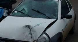Ford uderzył w drzewo