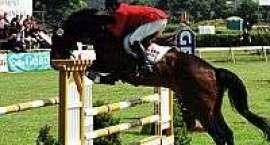 Mikołajewo-zawody jeździeckie