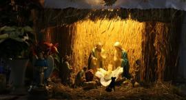 Tutejsze szopki bożonarodzeniowe