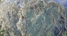Kamień, który pamięta Napoleona