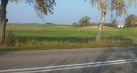 Plany remontu drogi Sejny-Poćkuny