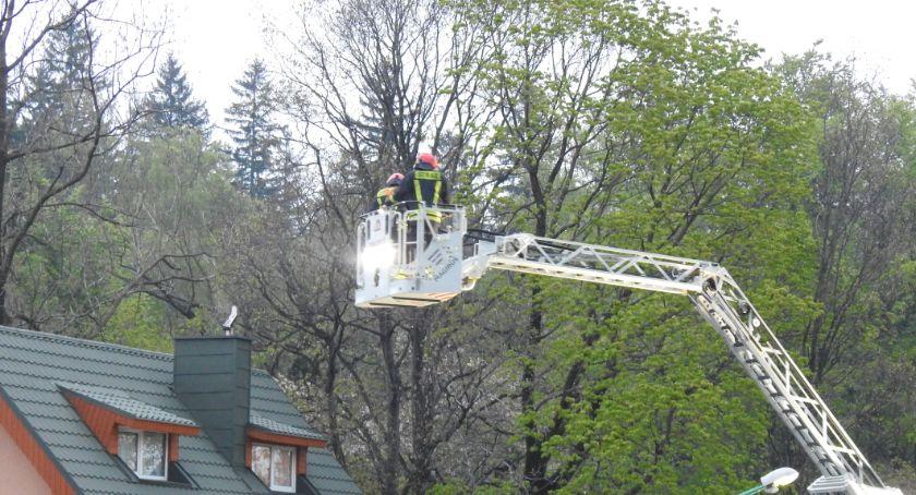 Na sygnale, Interwencja straży pożarnej ulicy Kasprowicza - zdjęcie, fotografia