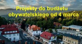 Projekty do budżetu obywatelskiego od 4 marca