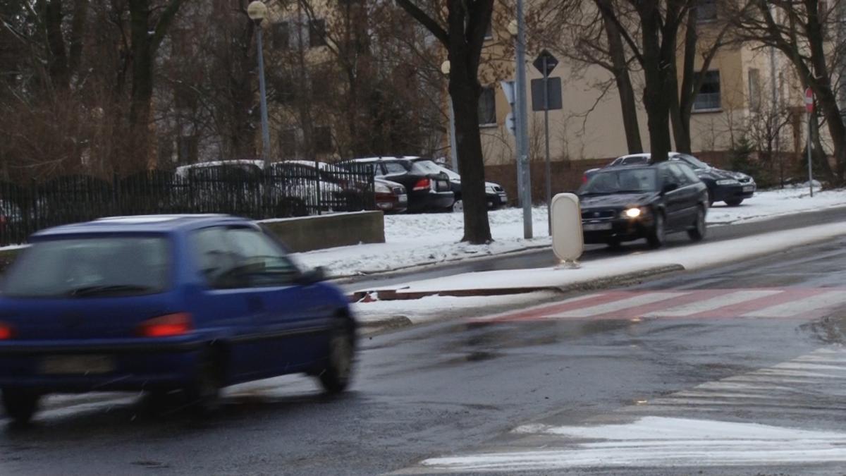Wydarzenia, Policjanci zwracali uwagę pieszych - zdjęcie, fotografia