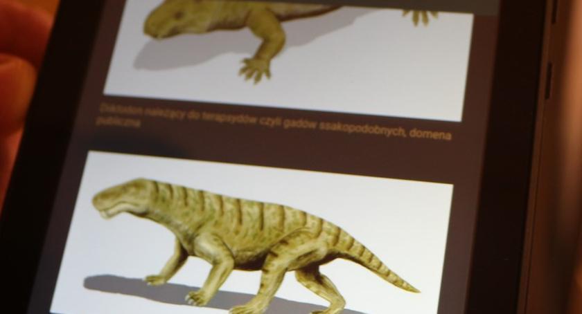 Muzeum Miedzi, Muzeum technologia pierwsza legnicka wystawa miarę wieku - zdjęcie, fotografia