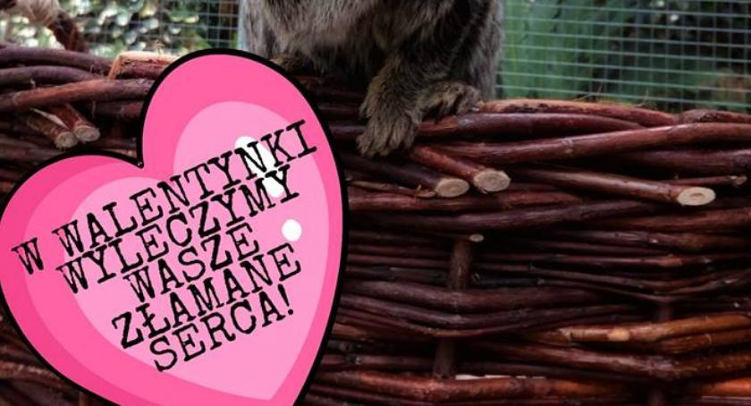 Po godzinach, Walentynki zemścij swoim byłym partnerze - zdjęcie, fotografia