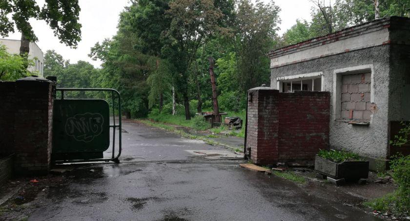Wydarzenia, Nadzór budowlany zajął opuszczonym szpitalem Lasku Złotoryjskim - zdjęcie, fotografia