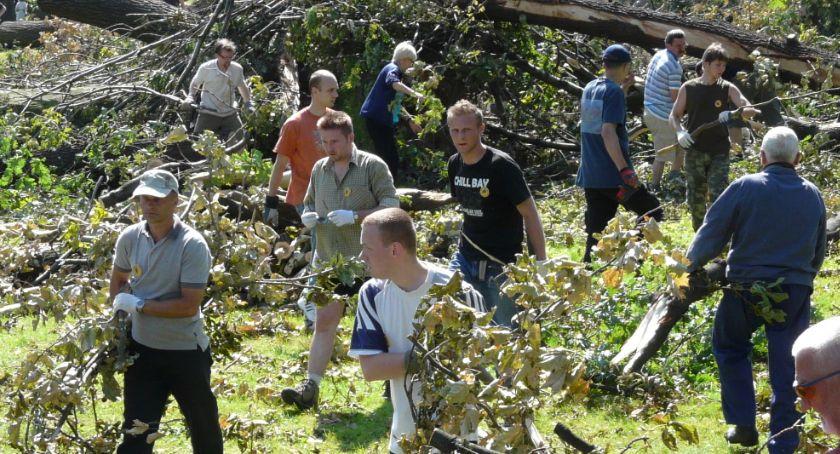 Po godzinach, Podziel wspomnieniami huraganie odbudowie parku sprzed - zdjęcie, fotografia