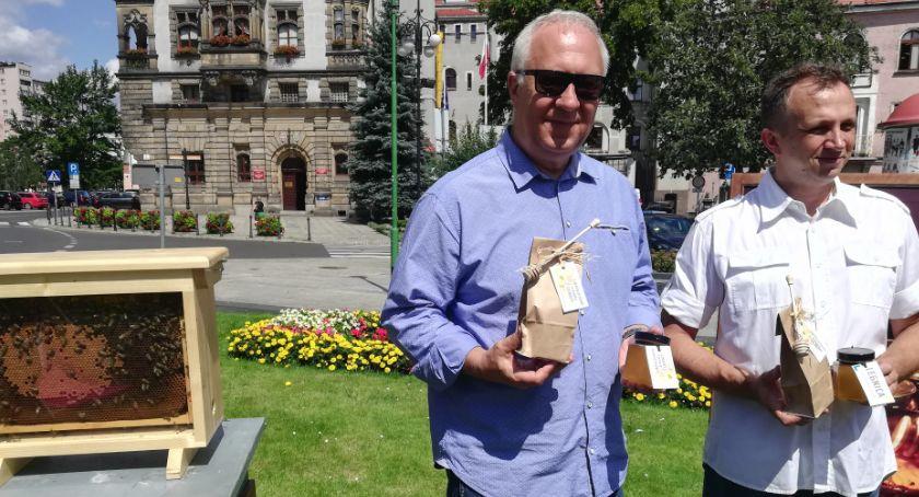 Gospodarka, Ratusz chwali legnickim miodem zapowiada łąki mieście - zdjęcie, fotografia