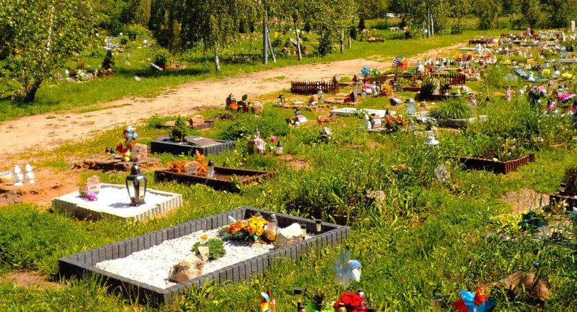 Wydarzenia, cmentarzem zwierząt Legnicy Urzędnik wróżka - zdjęcie, fotografia