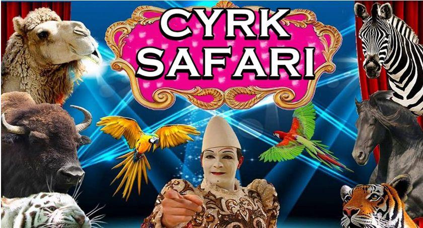 Po godzinach, #KonkursyTuLegnica Bajkowe Cyrku Safari Legnicy! - zdjęcie, fotografia