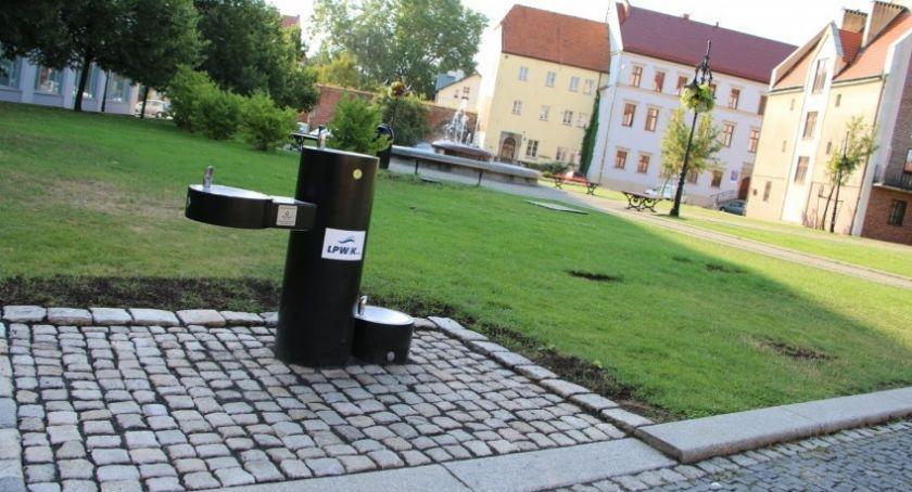 Wydarzenia, Fajny pomysł miejskiej spółki Wodociągi pamiętają psach - zdjęcie, fotografia