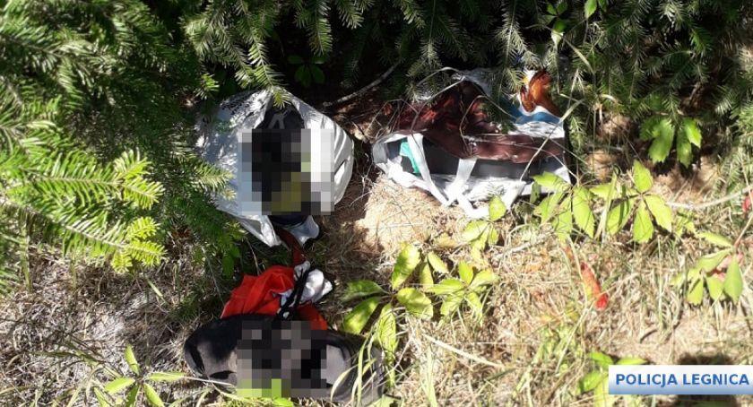 Sprawy kryminalne, Okradli Legnicy kilka godzin później trafili kraty - zdjęcie, fotografia