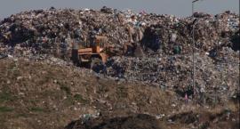 Zielony rozwój: Segregacja odpadów