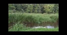 Eko Patrol - Ochrona Przyrody