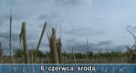 Teledziennik, 06-06-2012
