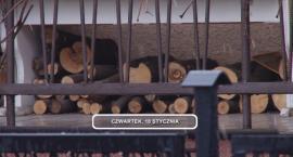 Legnica, Informacje Dami TV, 10.01.2019